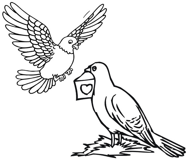 pigeon sending a message coloring page