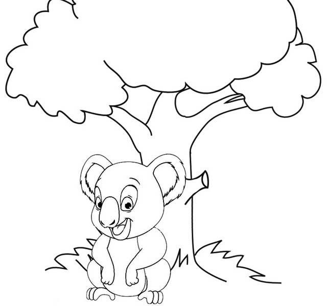 Fun Koala Zoo Coloring Page