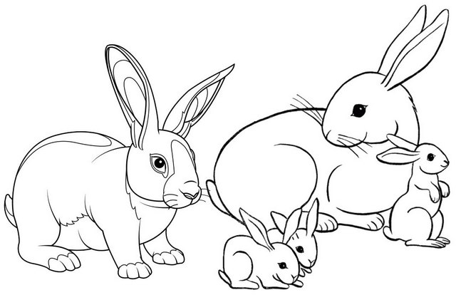 Rabbit Family Coloring Page