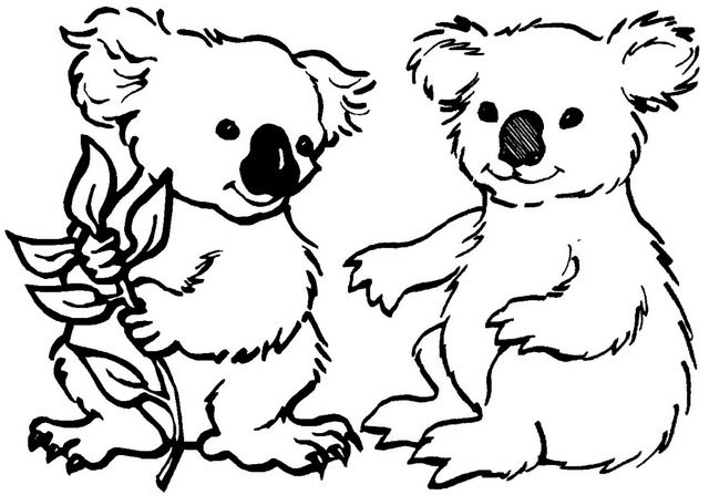 a couple of lovely koalas coloring page