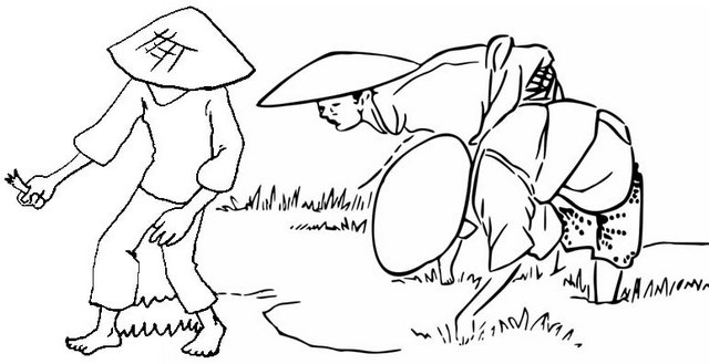farmers planting rice field coloring page