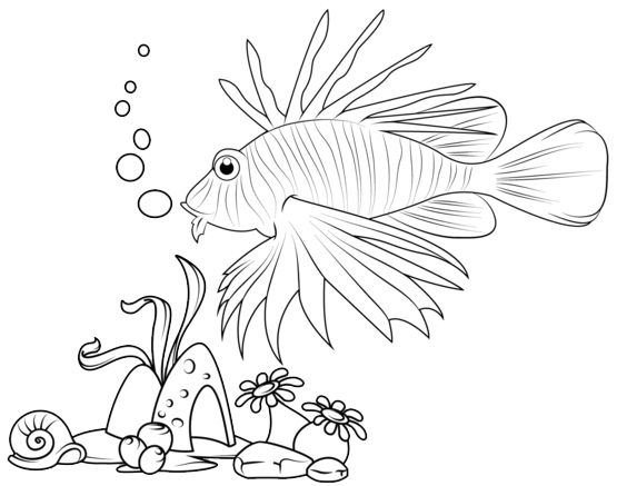 lionfish swims along the edge of a coral reef coloring page