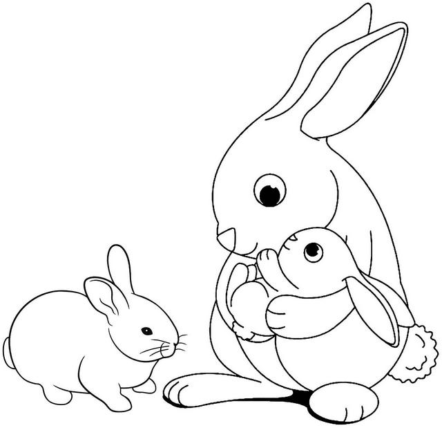 rabbit and babies coloring page