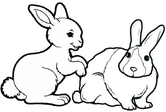 rabbits playing coloring page
