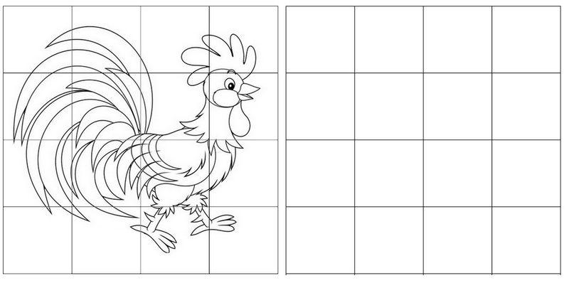 rooster grid drawing of animal
