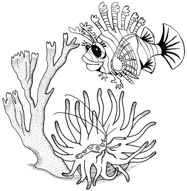 stunning beautiful lionfish cartoon coloring page