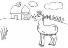 Top 9 Cutest Alpaca Coloring Pages for Kids
