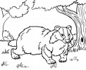 7 Best Badger Coloring Pages for Kids