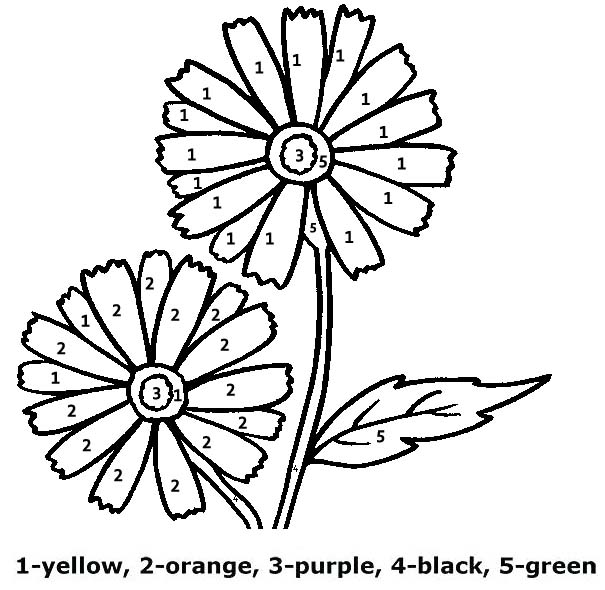Daisy Flower Color By Number Worksheet