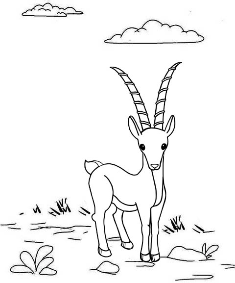 Fun Antelope Coloring Page for Kids