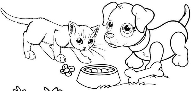 best dog and cat eating pet foods together coloring page