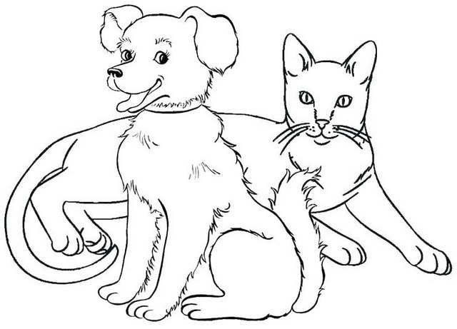 dog and cat sit coloring page