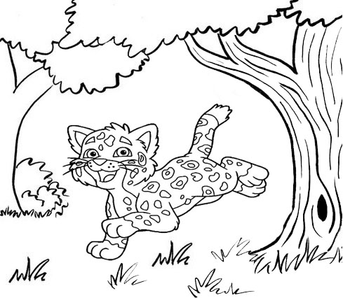 cute baby jaguar jumping coloring page