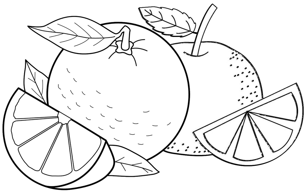 Sweet and Fresh Orange Fruit A Slice of Orange Fruit Coloring Page