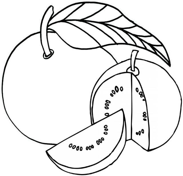 Ripening Guava Coloring